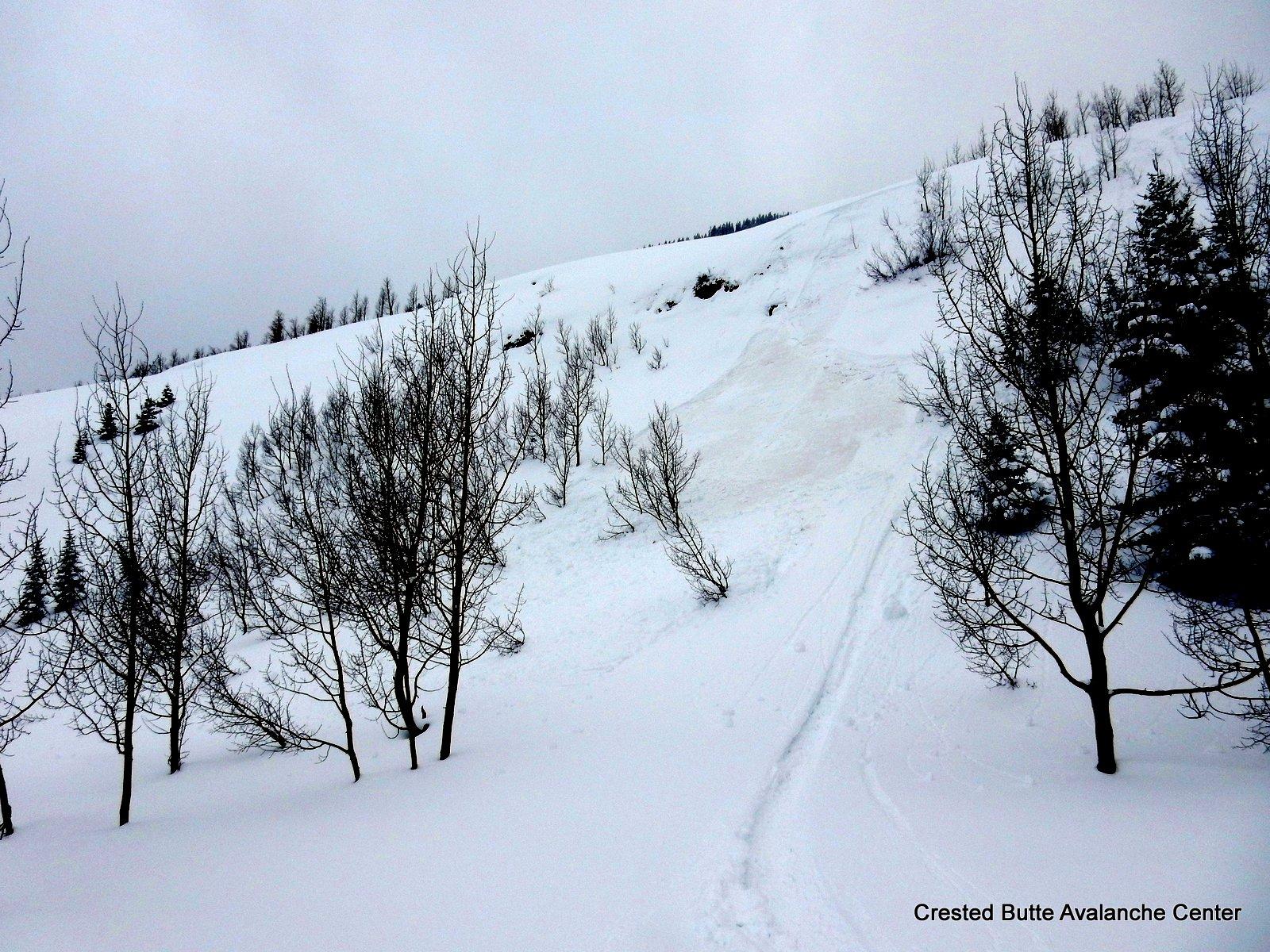 Pinwheels and skier triggered wet loose, NE aspect BTL near valley bottom.